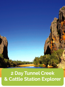 2 Day Tunnel Creek & Cattle Station Explorer