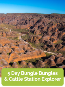 5 Day Bungle Bungles & Cattle Station Explorer